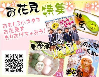 hanami395_309.jpg